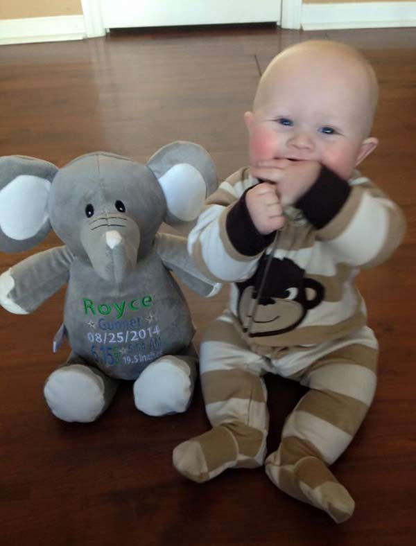 Grey Elephant Teddy